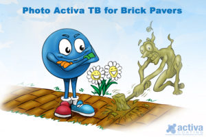 Photo Activa TB for Brick Pavers