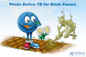 Photo Activa TB for Brick Pavers